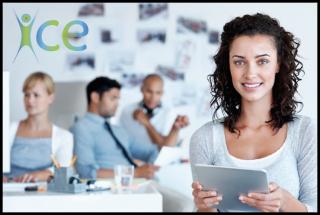 Program pro začínající podnikatele